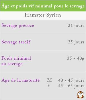 Poids et âge du sevrage chez le hamster roborovski