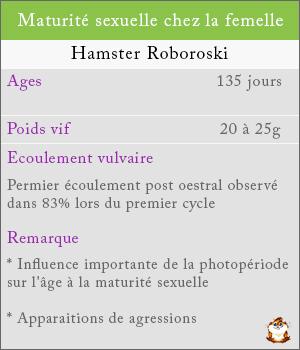 Maturité sexuelle chez les femelles hamsters roborovski