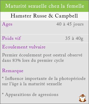 Maturité sexuelle chez les femelles hamsters russe et campbell