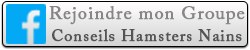 Groupe Facebook - Conseils Hamsters Nains